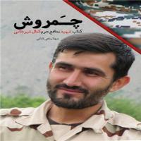 خبر: شهیدی که پهپاد را به سوریه برد