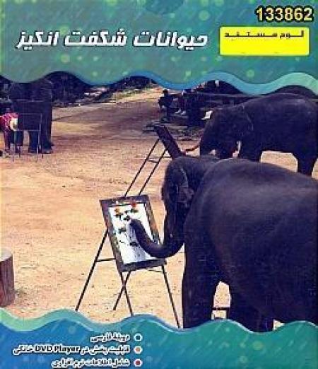 مستند حیوانات شگفت انگیز