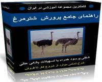 آموزش فارسی پرورش ونگهداری شترمرغ