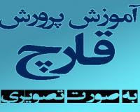 آموزش فارسی پرورش قارچ خوراکی (دکمه ای . صدفی و...)