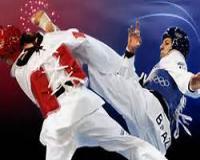 آموزش فارسی تصویری ورزش المپیکی تکواندو