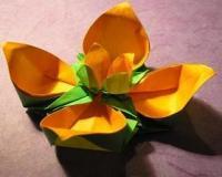مجموعه آموزش اوریگامی(هنر کاغذ و تا) Origami
