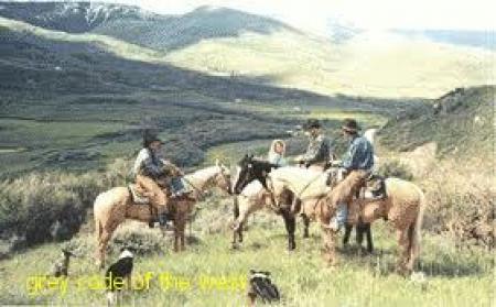رمان آمریکایی grey code of the west(محصول سال 1972 - پرینت شده در آمریکا)