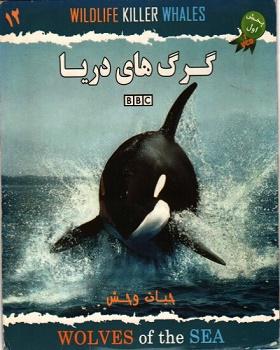 مستند گرگهای دریا BBC