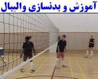 آموزش و بدنسازی والیبال