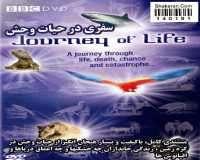 BBC Journey Of Life