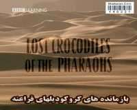 BBC Lost Crocodiles of the Pharaohs