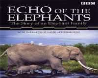 BBC Echo of the Elephants