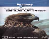 Birds Of Prey - پرندگان شکارچی