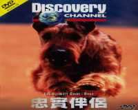 Discovery Channel Dogs - سگ ها