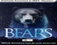 IMAX Bears - خرس ها