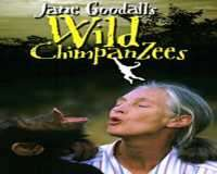 IMAX Jane Goodall